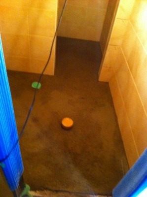 トイレ壁タイル完了 床のタイル下地中 丸い穴は、床の排水口とパイプが 詰まった時の掃除口
